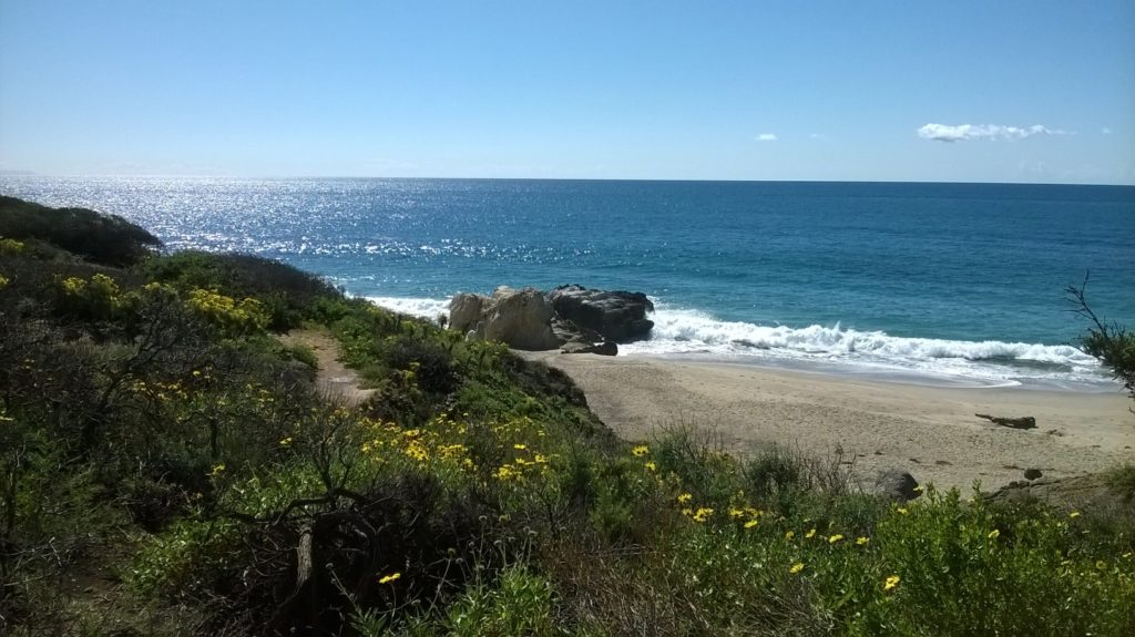picture of the ocean MAlibu