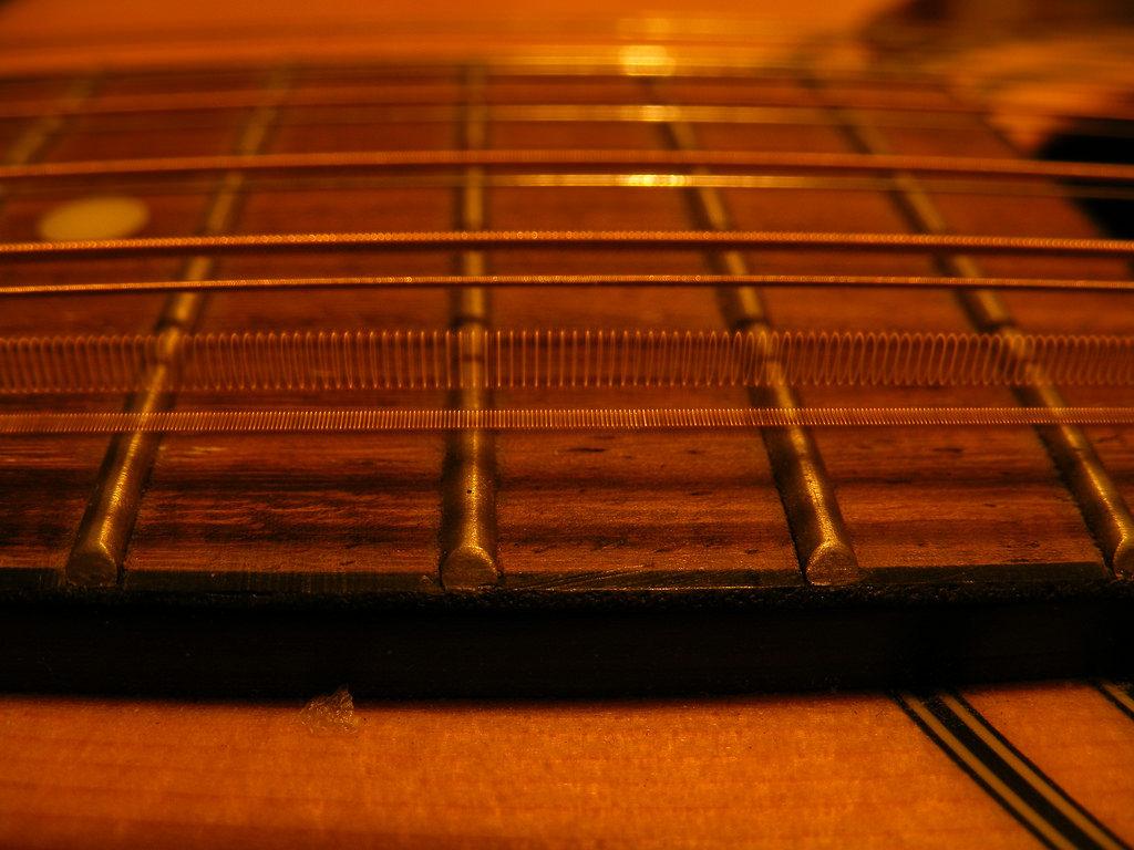 guitar fender plucked string