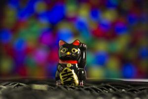 lucky asian kitty